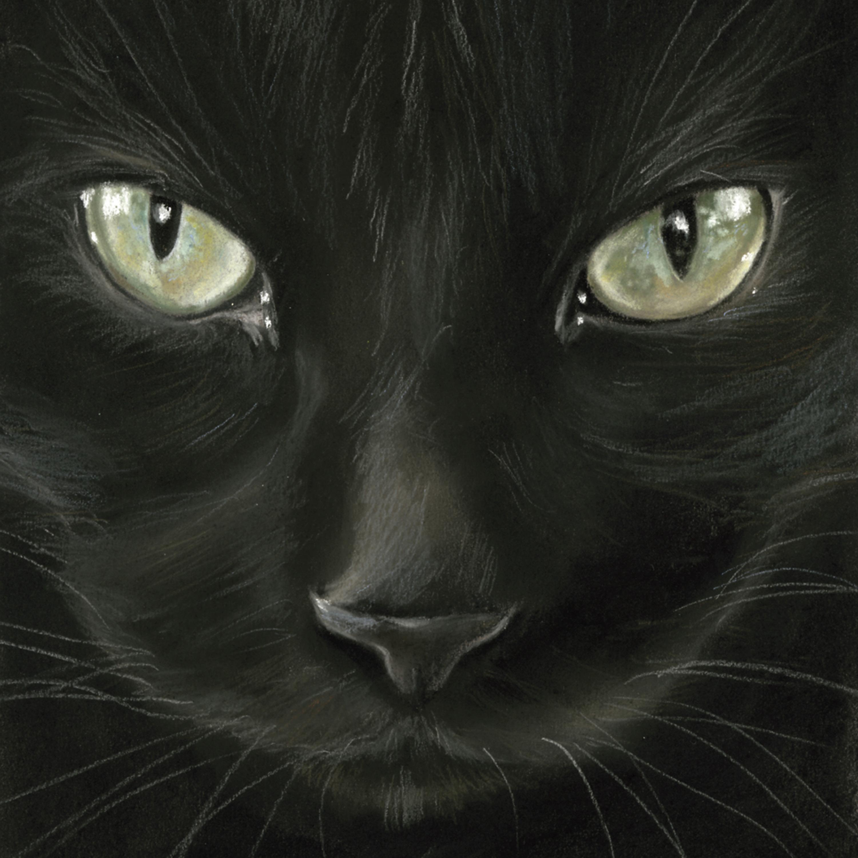 Black Cat Napkin 33x33