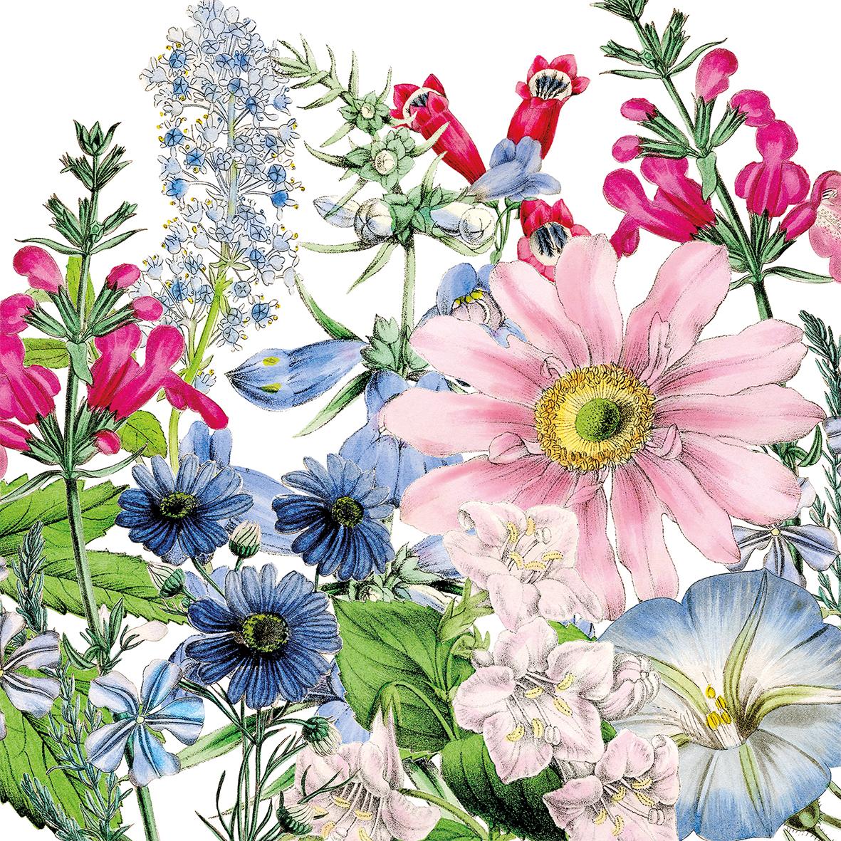 Floriculture 25x25 cm
