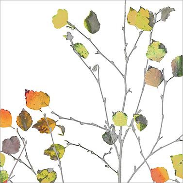 Minimal Autumn 33x33 cm