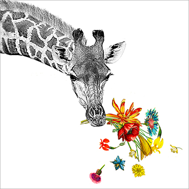 Happy Giraffe 33x33 cm