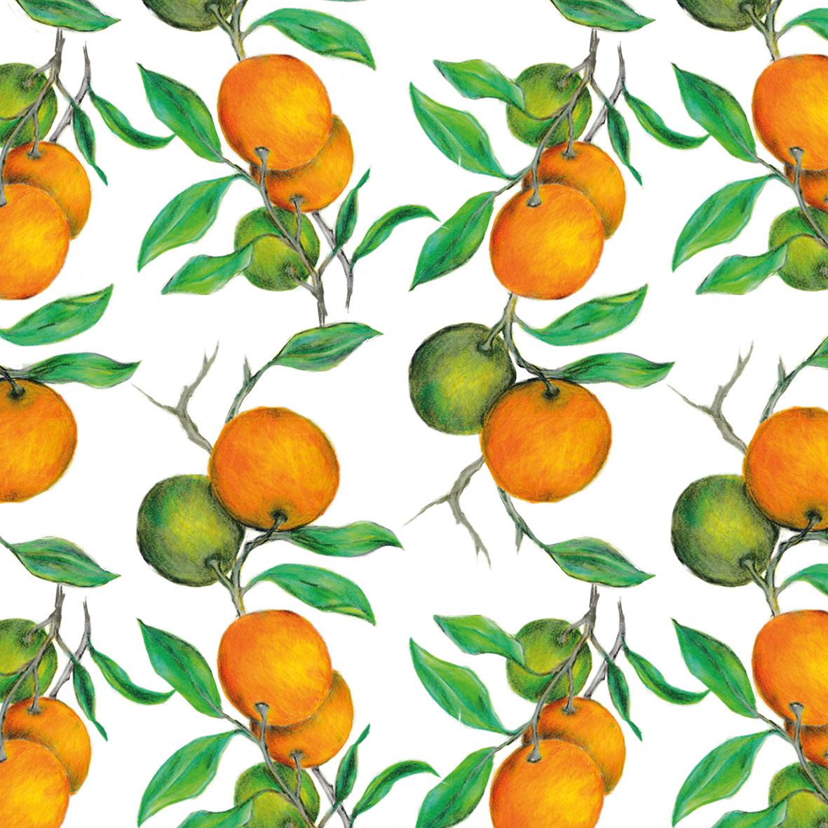 Beautiful Oranges Napkin 33x33