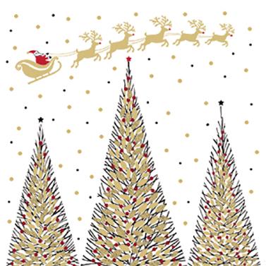 Joyeux Noel 33x33 cm