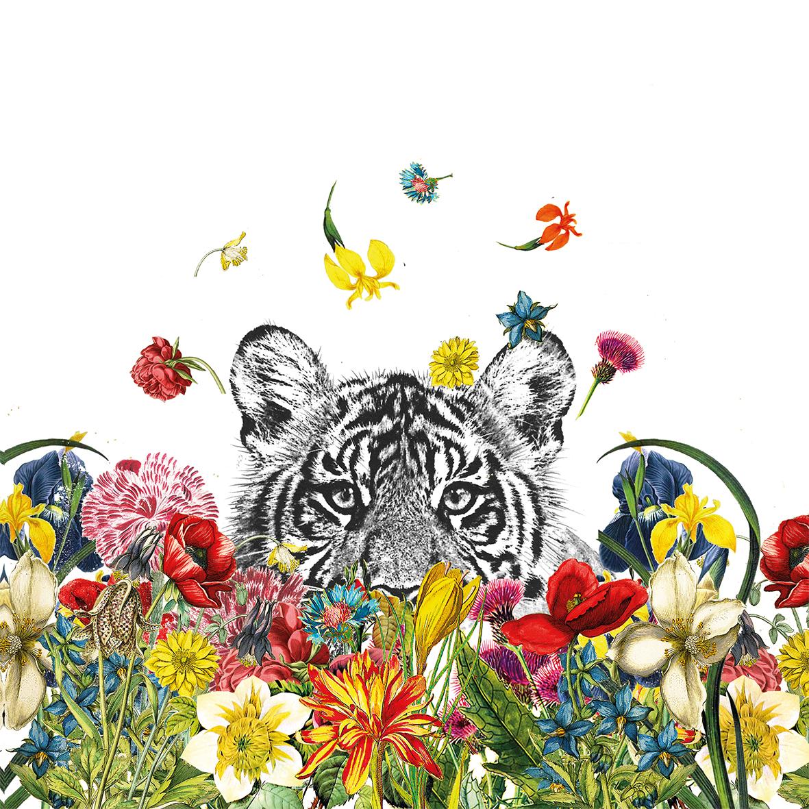 Happy Tiger 33x33 cm