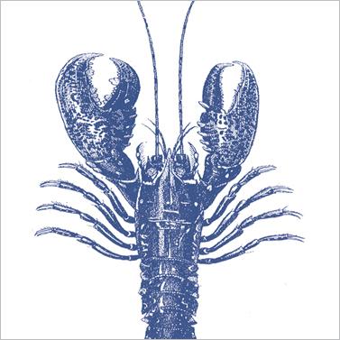 Lobster marine  33x33cm