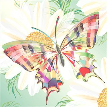 Echo Butterfly 33x33 cm