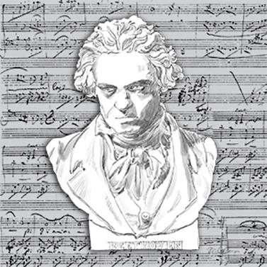 Beethoven 25x25 cm
