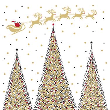 Joyeux Noel 25x25 cm