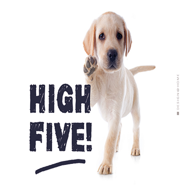 Tray High Five