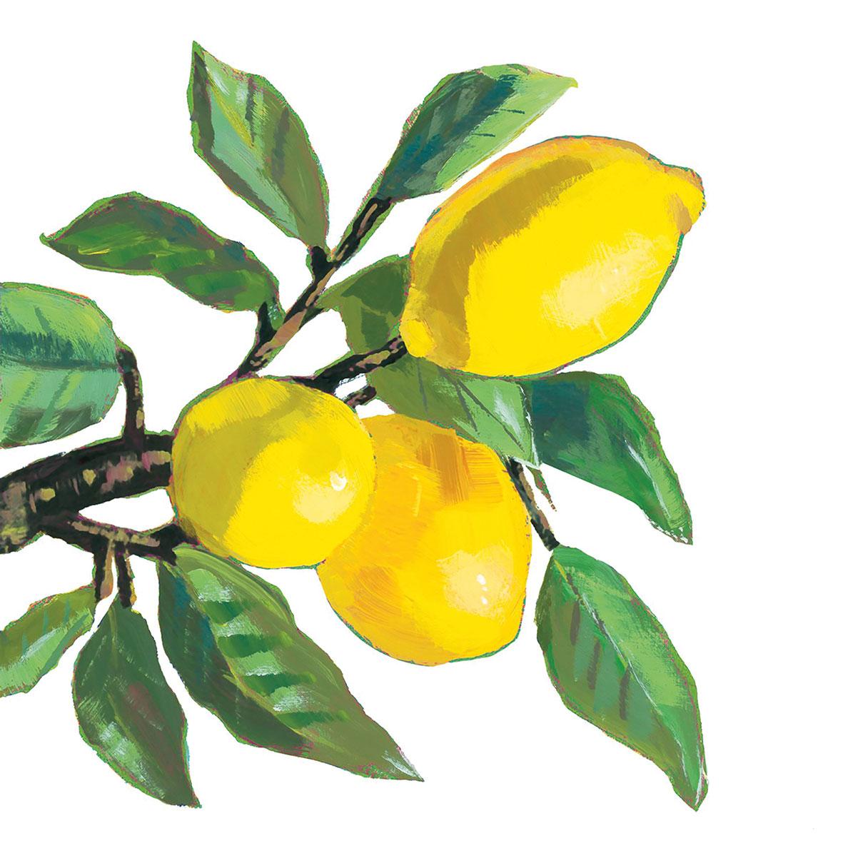 Lemon Musée white  25x25 cm