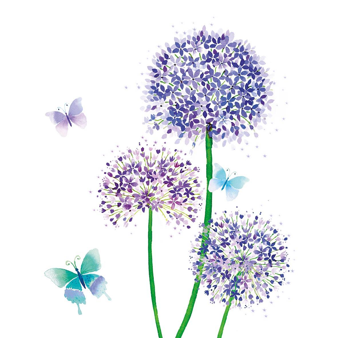 Allium 33x33 cm