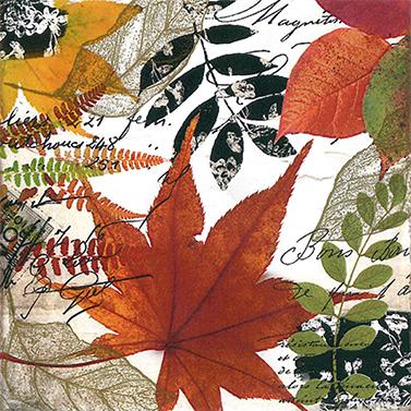 Autumn Collage 33x33 cm