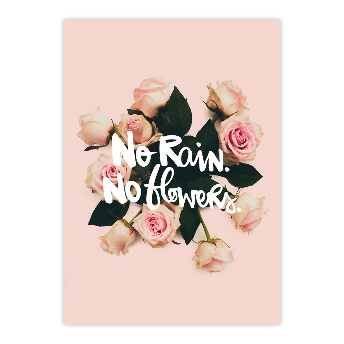 No Rain No Flowers Postcard